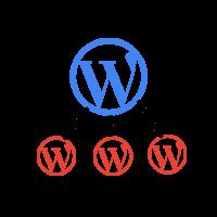 Support WordPress multisite