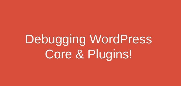 debugging in wordpress e1623854809531 – Google Sheet Connector